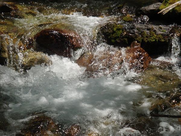 PORTRAIT OF A MOUNTAIN STREAM